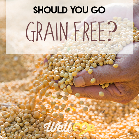 grain free diet title card