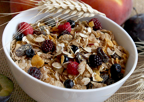 bowl of dried fruit and oat cereal
