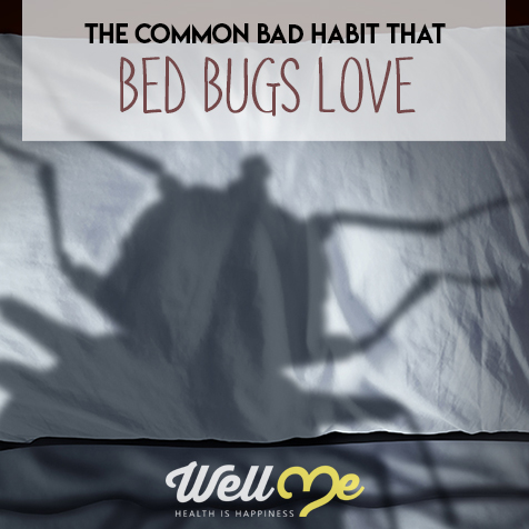 how to get rid of bed bugs title card