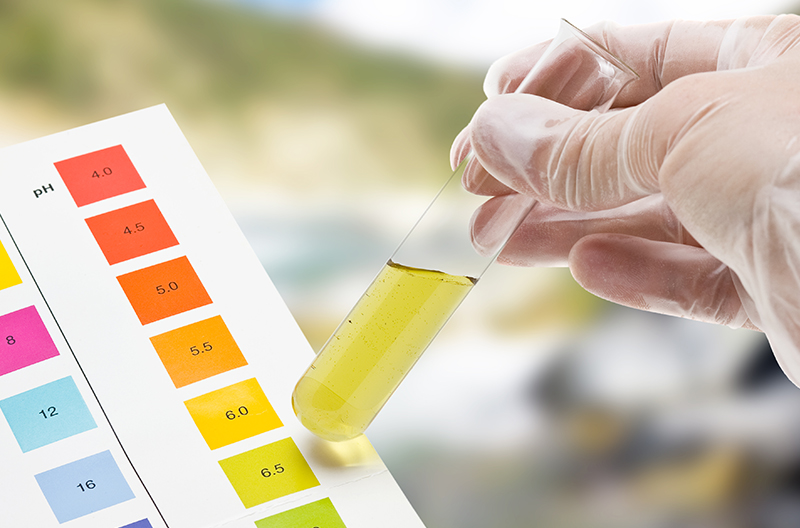 What You Need to Know About Your pH Level (And How to Change It)