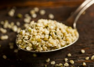 close up on a spoonful of hemp seeds on a dark background