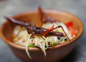 a bowl of salad topped with fried grasshoppers