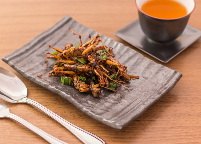a plate of edible insects on a table with a cup of tea
