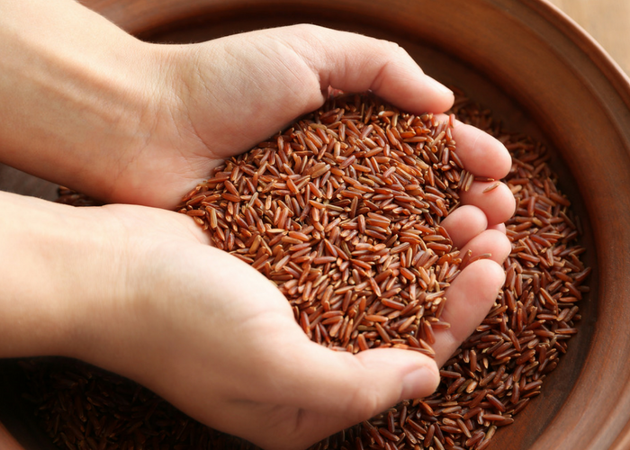 a person holding a handful of gluten free brown rice grains