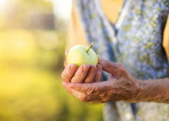 hands of an old woman holding a green apple