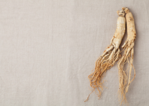 two ginseng roots on a grey background