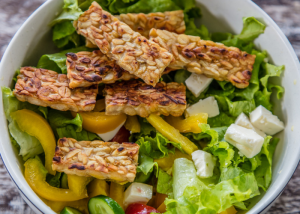 fried tempeh on a bed of fresh green salad