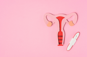 Cardboard cutout of the female reproductive system next to a pregnancy test stick, against a pink background