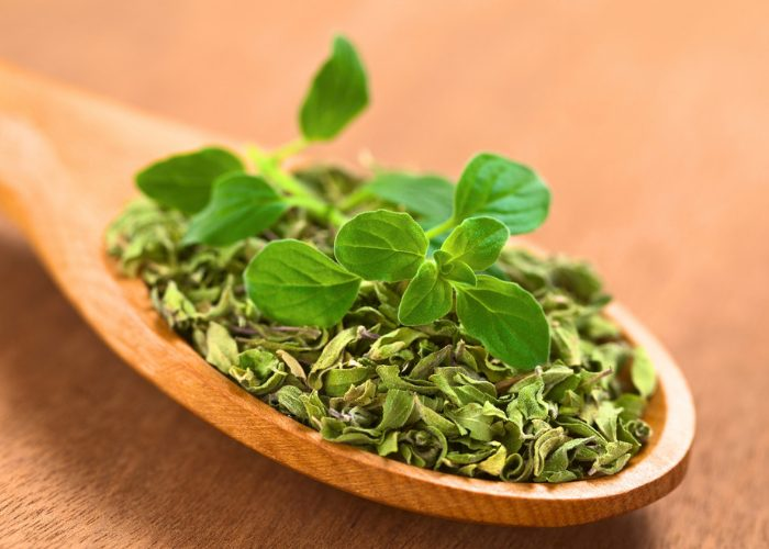 A wooden spoon with dried and fresh oregano leaves