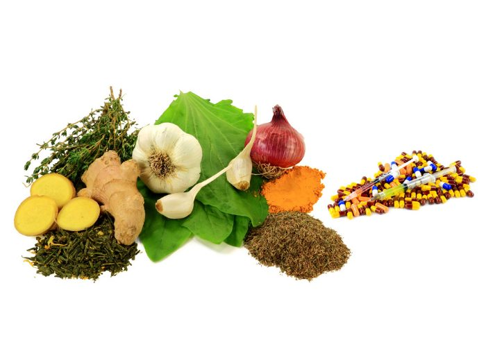 Some of the strongest natural antibiotics such as garlic, ginger, turmeric root next to a pile of prescription antibiotic pills