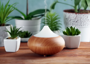 An wooden aromatherapy diffuser with potted plants in the background