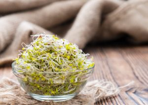 Broccoli sprouts in a small glass bowl