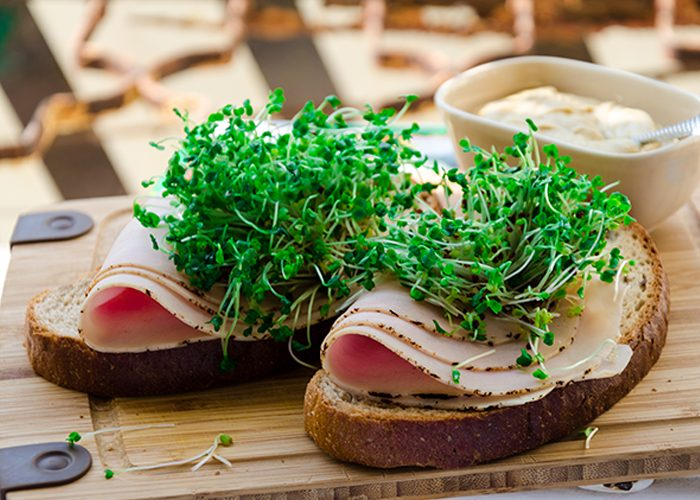 Broccoli sprouts topping on two slices of turkey and hummus toast