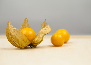 Two golden berries next to one golden berry in its husk.