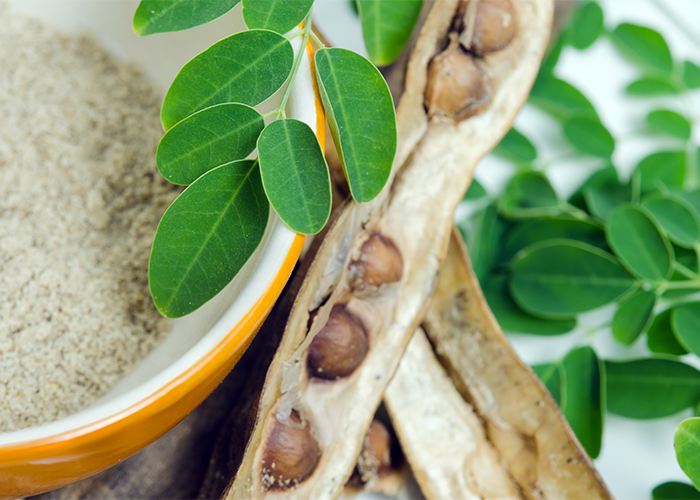 An arrangement of moringa pods, powder, and leaves.