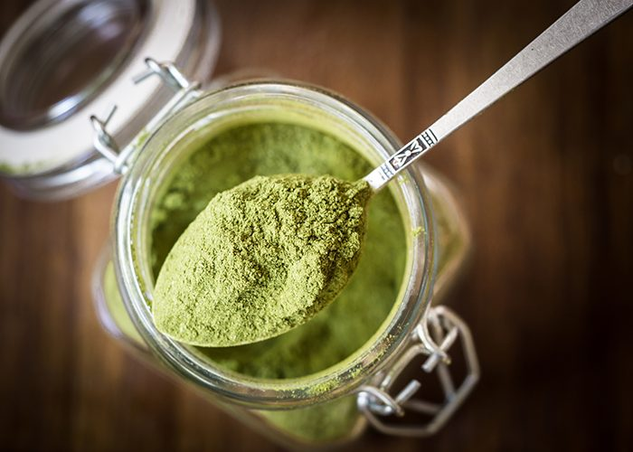 A spoonful of moringa powder being scooped out of a jar