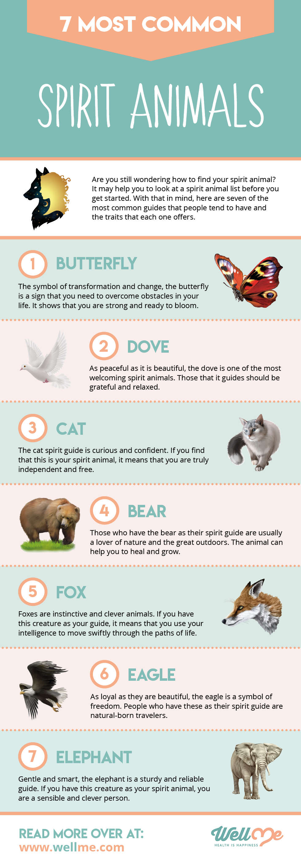 7 Most Common Spirit Animals - What is My Spirit Animal infographic