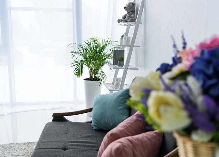 The side of the couch with a pot of flowers defocused and the frame focused on a small green palm on the far side of the living room