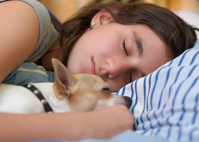 Young woman napping in bed with her dog