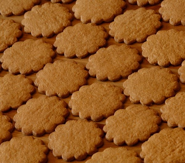 paleo gingerbread cookies featured image