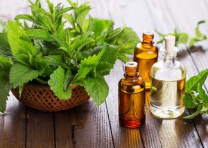 Peppermint essential oils for headaches