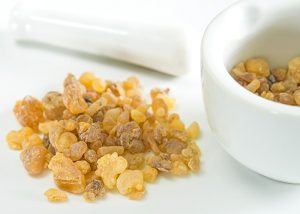 Raw frankincense used in essential oils for skin tightening