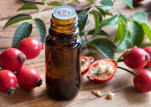 Rosehip essential oil great for eye wrinkles next to a sprig of fresh rosehip