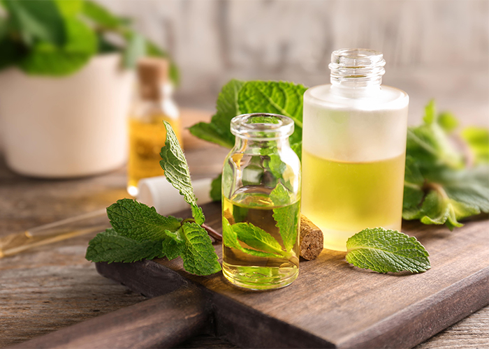 Bottles of freshly poured peppermint essential oil made with fresh peppermint leaves