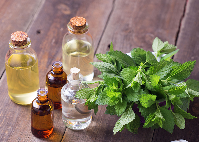 A variety of bottles all filled with both pure and diluted peppermint oil