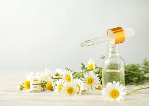 An open bottle of chamomile oil next to freshly cut chamomile flowers