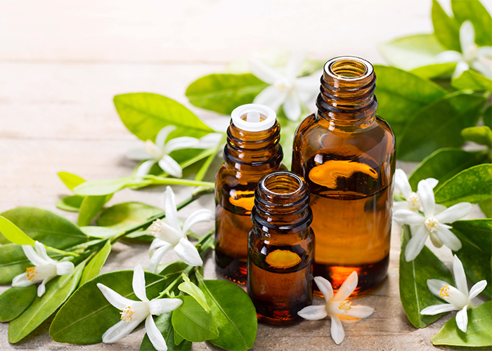 Different sized bottles of neroli oil surrounded by neroli flowers