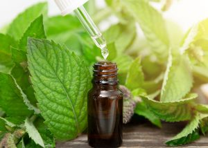 A bottle of peppermint essential oil with a dropper surrounded by peppermint leaves