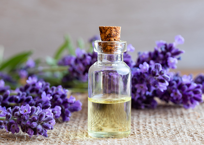 A clear bottle of lavender essential oil next to sprigs of freshly picked lavender