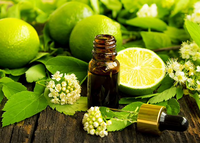An open bottle of citrus essential oil  surrounded by fresh limes and lime flowers and leaves.