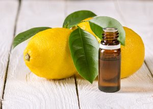 An open bottle of lemon essential oil next to two whole lemons with leaves