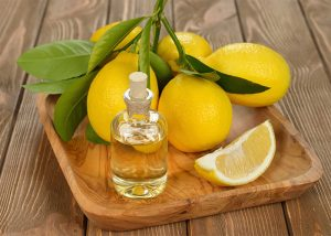 A wooden tray with a bottle of homemade lemon essential oil and a bunch of lemons still on the stem
