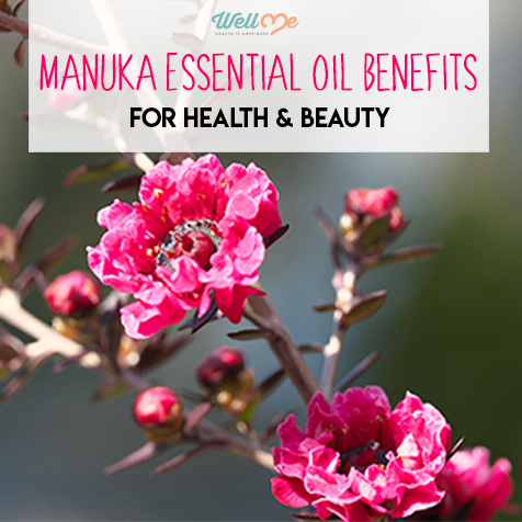 Manuka Essential Oil Benefits for Health & Beauty