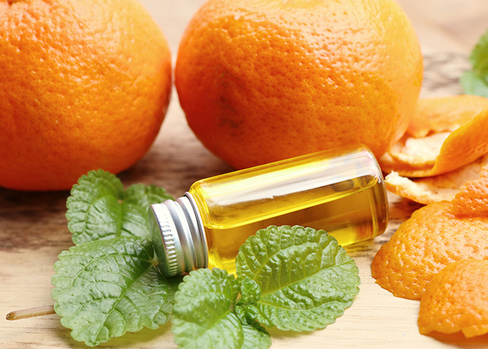 A bottle of bergamot, orange, and peppermint essential oil surrounded by fresh oranges and peppermint leaves
