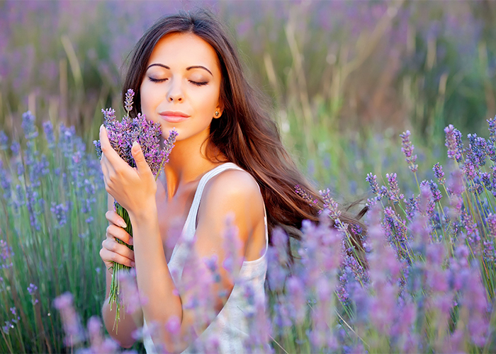 A woman in a lavender field holding a bunch of lavender flowers she just picked