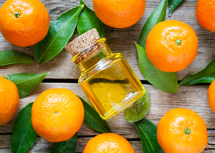 Top-down view of a freshly bottled bottle of tangerine essential oil surrounded by whole tangerines