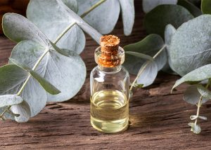bottle-of-essential-oil-with-fresh-eucalyptus-twigs