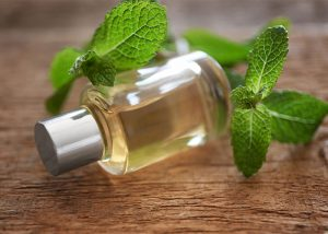 essential-oil-with-mint-on-wooden-background